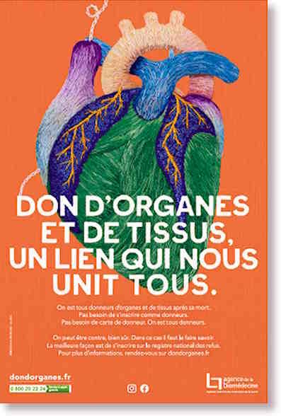 Don d'organes et de tissus, un lien qui nous unit tous